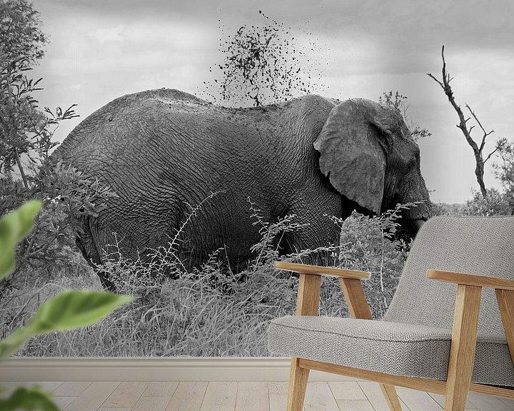 Sfeerimpressie behang: southafrica ... splish splash van Meleah Fotografie