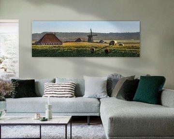 Hollands landschap von Harrie Muis