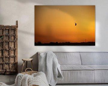 Zonsondergang met vogel na een lente dag van Ruud Wijnands