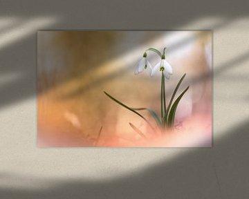 The very breath of spring van Bob Daalder