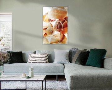 Slakkenhuisjes van BeeldigBeeld Food & Lifestyle
