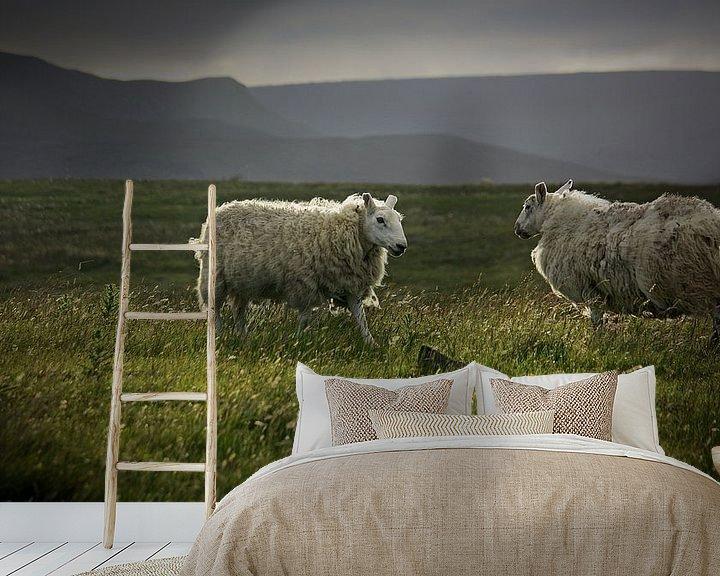 Sfeerimpressie behang: impressions of scotland - was waiting 4 u van Meleah Fotografie