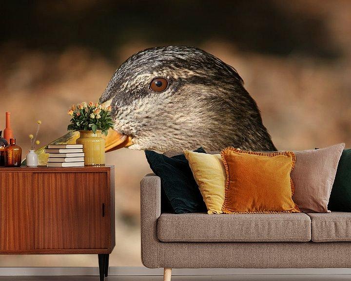 Beispiel fototapete: Entenweibchen von Meleah Fotografie