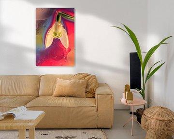 Relax Flower van Marcel van Rijn