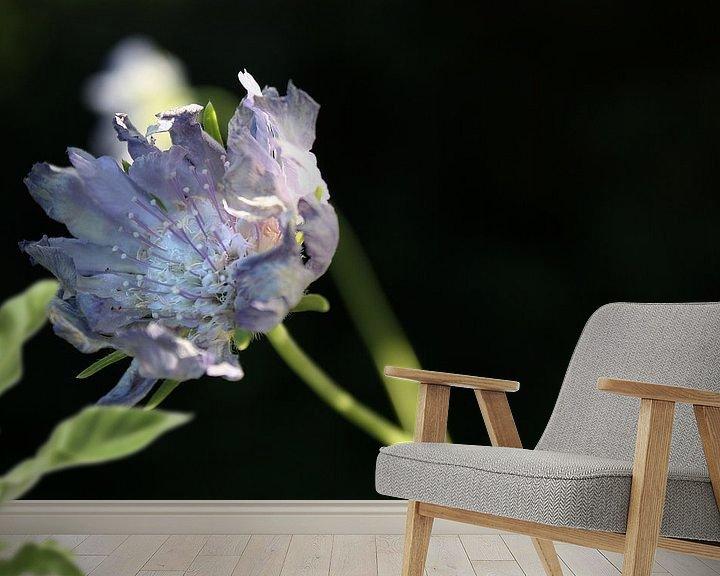 Beispiel fototapete: endless beauty von Meleah Fotografie