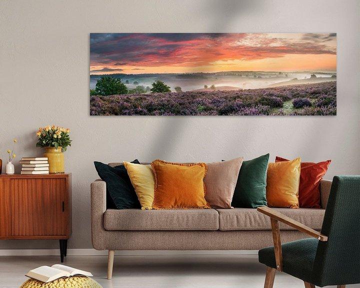 Sfeerimpressie: Panorama bloeiende heide op de Posbank van Sander Grefte