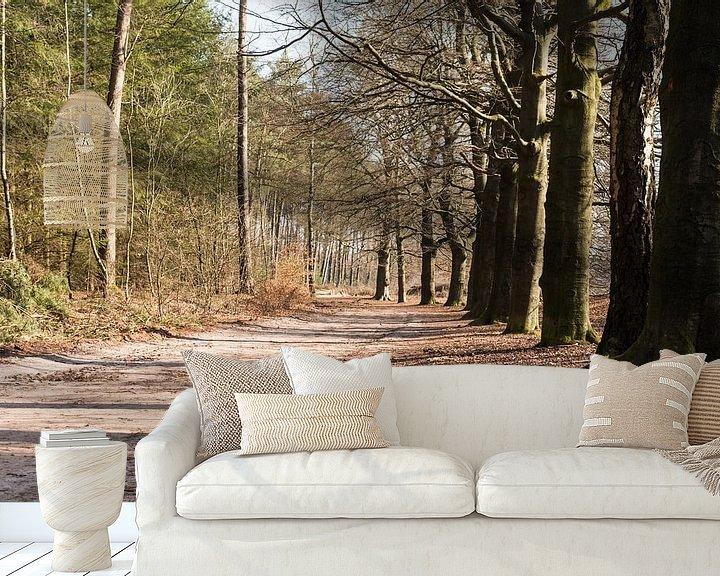 Sfeerimpressie behang: Wandelpad in bos Lage Vuursche van Jaap Mulder