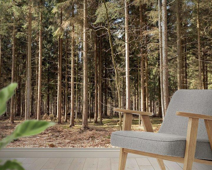 Sfeerimpressie behang: Rechte bomen op een rij in Lage Vuursche van Jaap Mulder