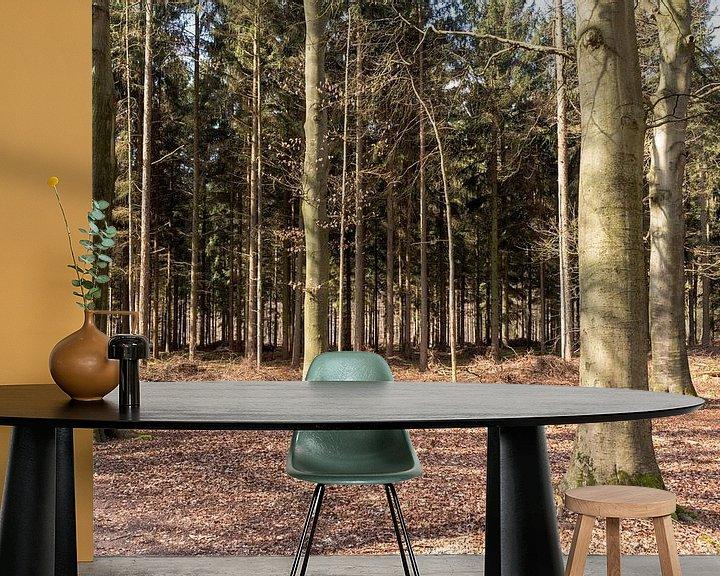 Sfeerimpressie behang: Bomen in de zon in Lage Vuursche van Jaap Mulder