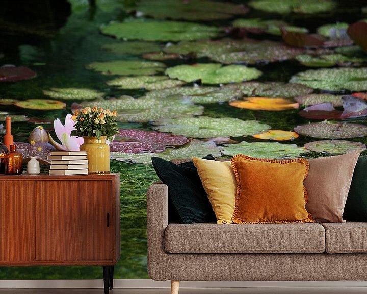 Sfeerimpressie behang: water lily van Meleah Fotografie