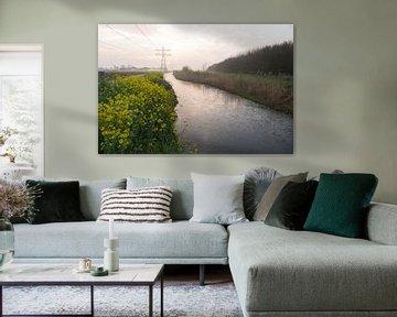 De ochtendhemel weerspiegeld in de Runnerburgersloot von Marijke van Eijkeren