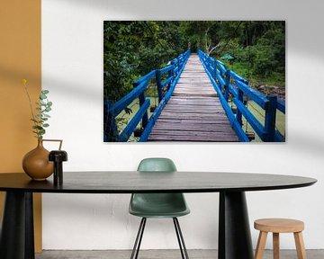Wood bridge in jungle van Arkadiusz Kurnicki