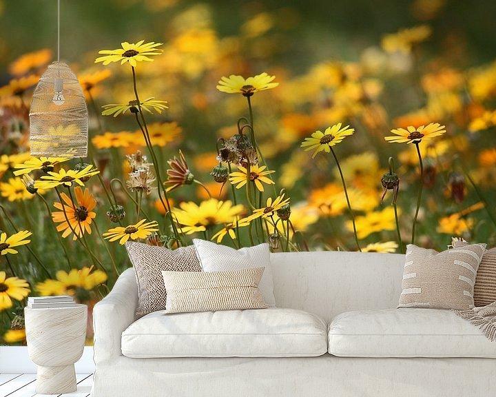 Beispiel fototapete: Blumenmeer von Meleah Fotografie