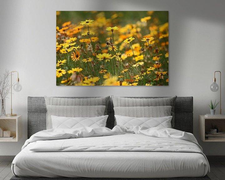 Beispiel: Blumenmeer von Meleah Fotografie