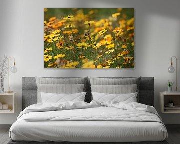 Blumenmeer van Meleah Fotografie