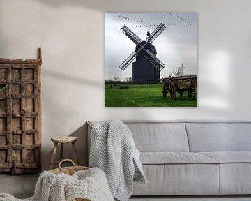 Paltrock windmolen van georgfotoart