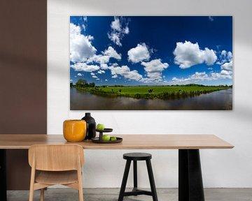 Hollands landschap panorama van Dennis van de Water