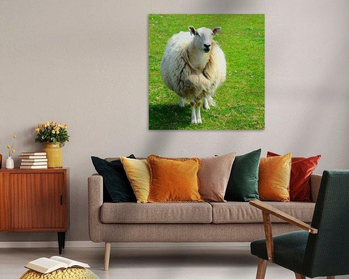 Impression: Juste des moutons ;-) sur Gisela Scheffbuch