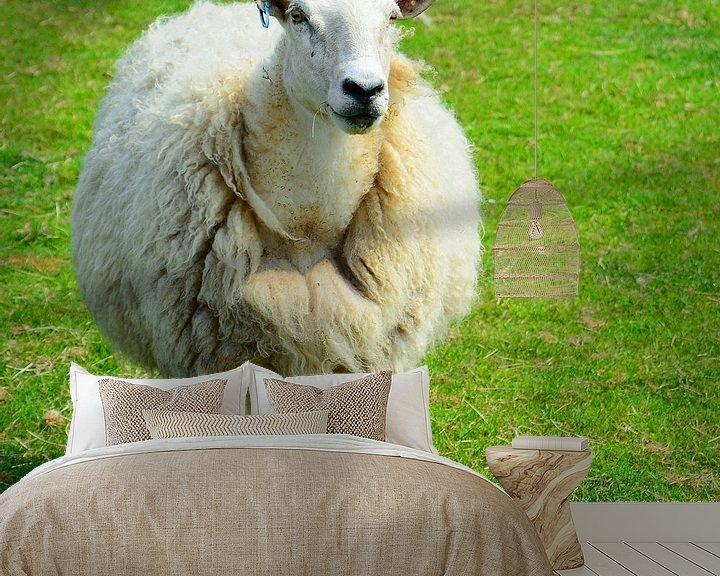 Beispiel fototapete: Einfach nur Schaf ;-) von Gisela Scheffbuch