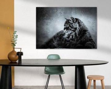 Cat king von Freddy Hoevers