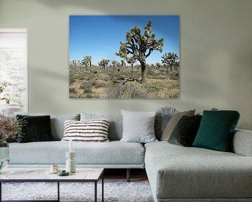 trees van Gerwin Hulshof