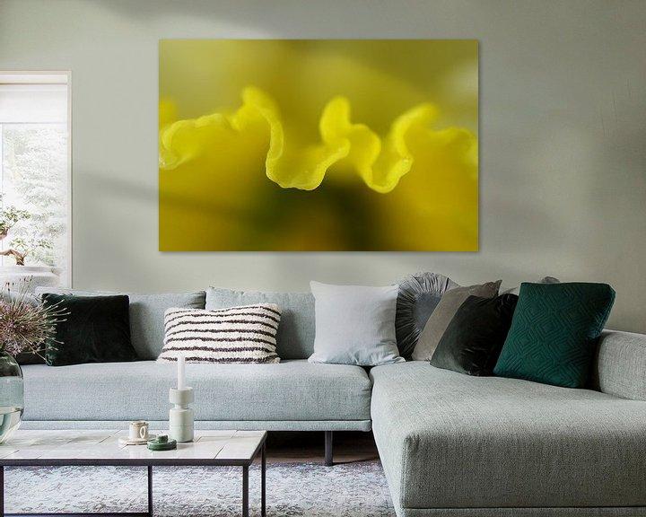 Sfeerimpressie: Narcis, macrofotografie  van Watze D. de Haan
