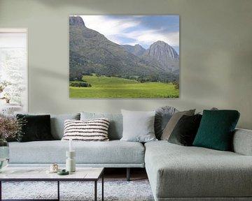 Thee plantage Malawi Mulanje bergen van Ruud Wijnands