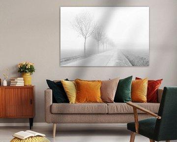 Winter is Coming van Cho Tang