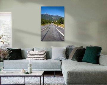 Mountain Road von Charlotte Meindersma