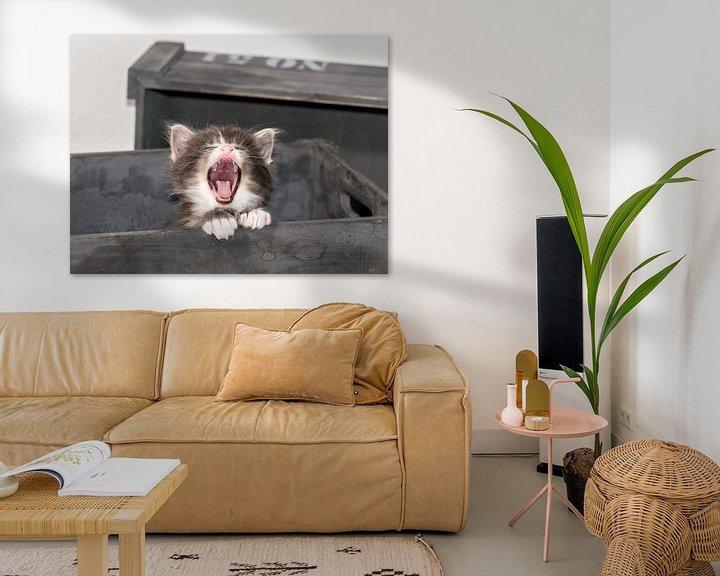 Beispiel: Kitty serie IV von Rob Smit
