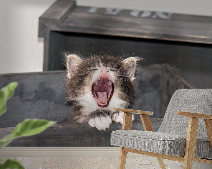 Beispiel fototapete: Kitty serie IV von Rob Smit