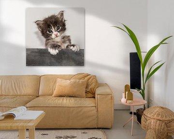 Kitten serie V von Rob Smit
