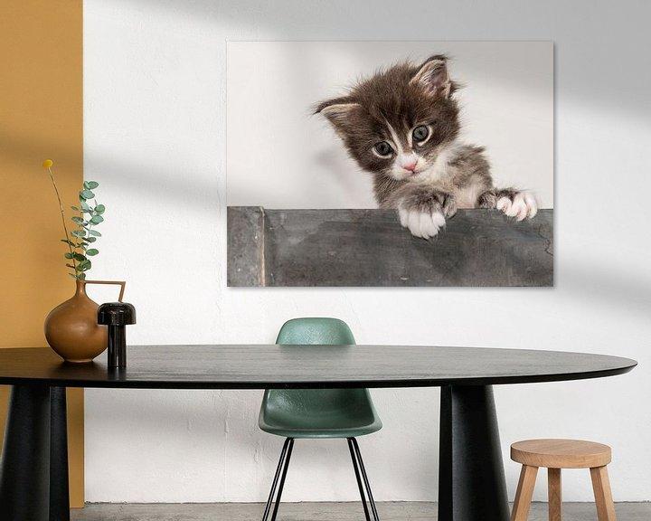 Beispiel: Kitty serie VI von Rob Smit