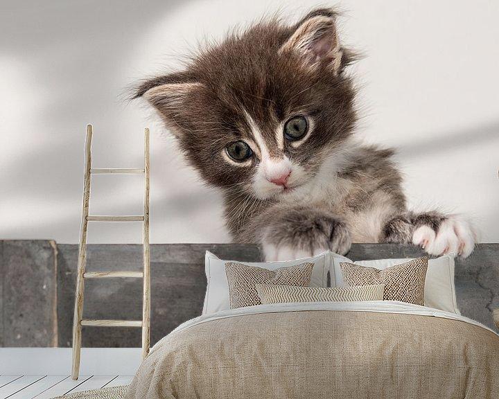 Beispiel fototapete: Kitty serie VI von Rob Smit