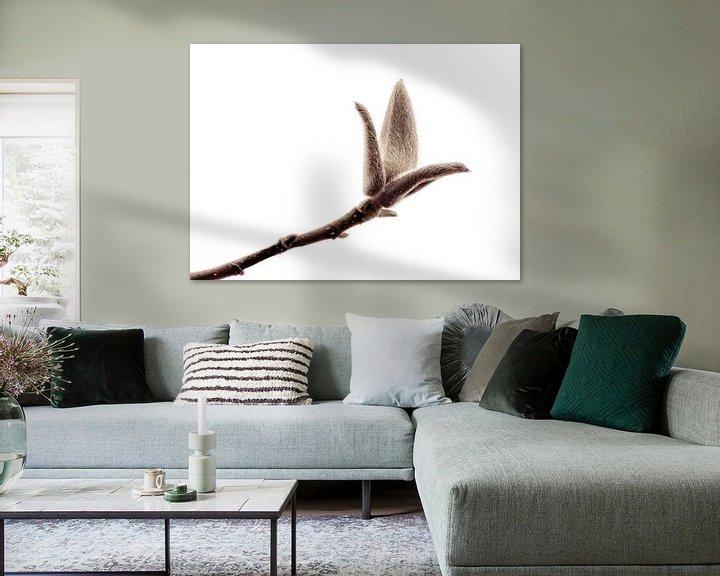 Sfeerimpressie: Bloemknop van de Magnolia  van Yvon van der Wijk