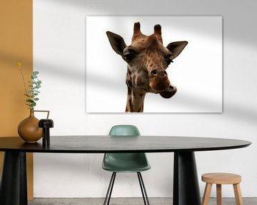 Giraf portret van Jojanneke Vos
