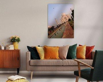 India - Taj Mahal van Carina Buchspies