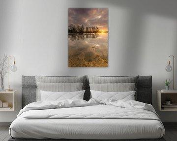 Have a dream van Jan Koppelaar