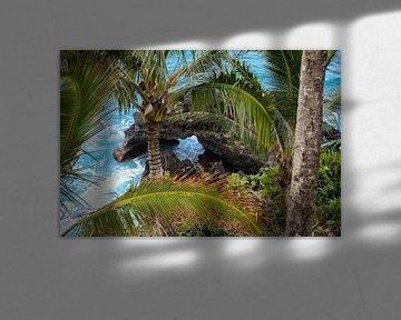 Lavakust op Maui