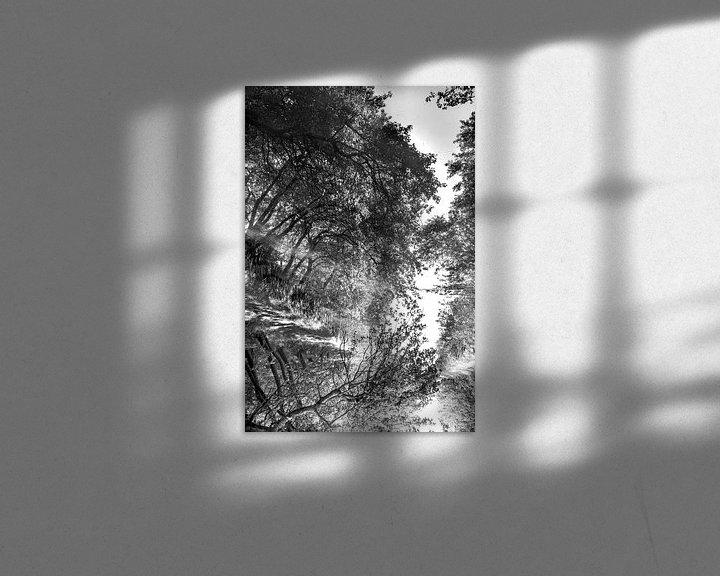 Impression: Twisted reflections en noir et blanc sur Anouschka Hendriks