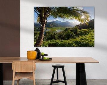 Kauai von Milene Bezemer
