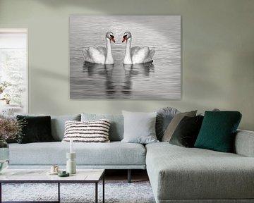 Deux cygnes de natation, photo noir et blanc sur Rietje Bulthuis