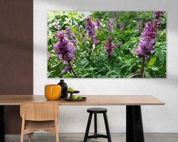 paarse bloemen in het bos  von Lucas Joël Smeenge