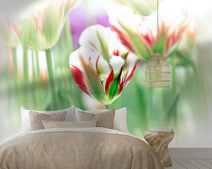 Sfeerimpressie behang: Soft Focus Tulp van Jeffry J.J van Berkum