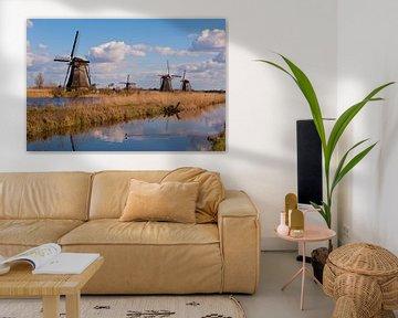 Windmills Horizon