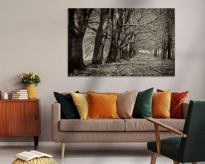 Sfeerimpressie: Koninklijke bomenlaan van Eddie Meijer