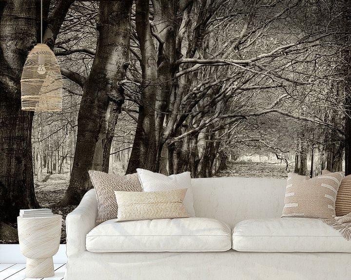 Sfeerimpressie behang: Koninklijke bomenlaan van Eddie Meijer