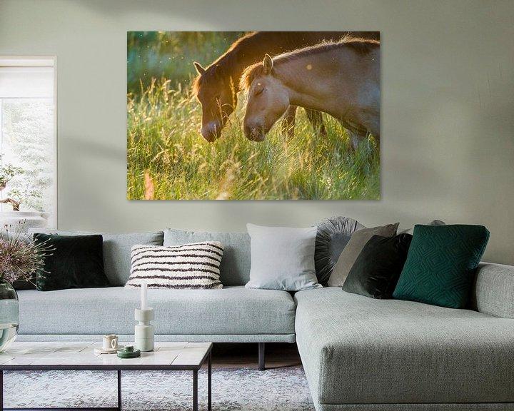 Sfeerimpressie: Twee lieve paarden van Bastiaan Schuit