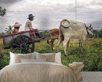 Boeren wagen van Bastiaan Schuit