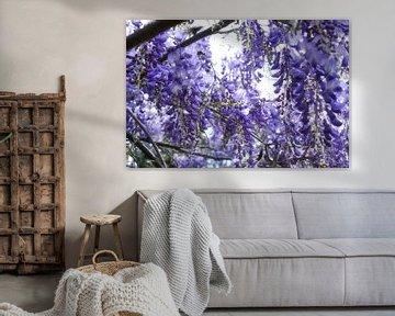 Abondance florale van Martine Affre Eisenlohr